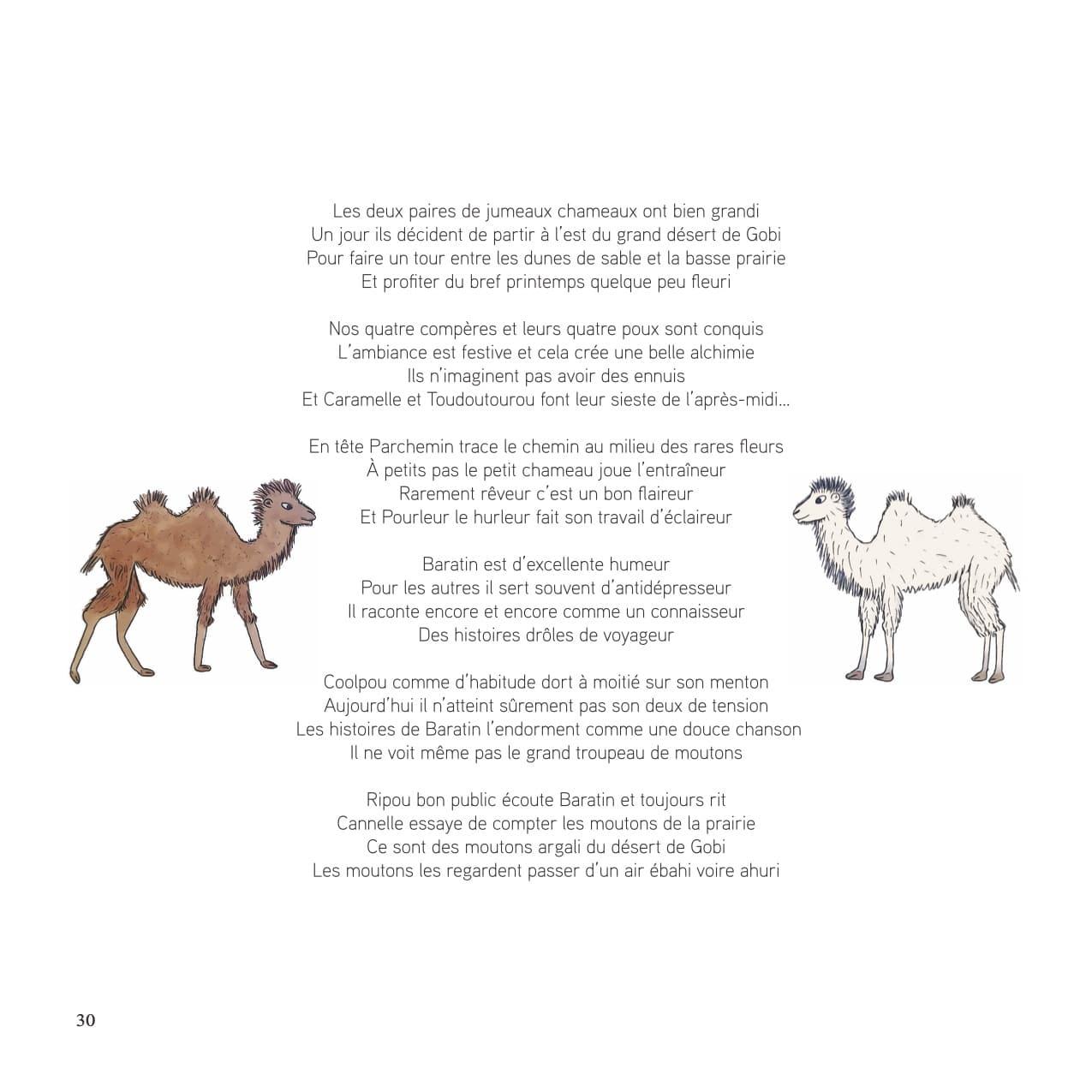 Extrait du livre pour enfants et jeunesse Des chameaux et des poux