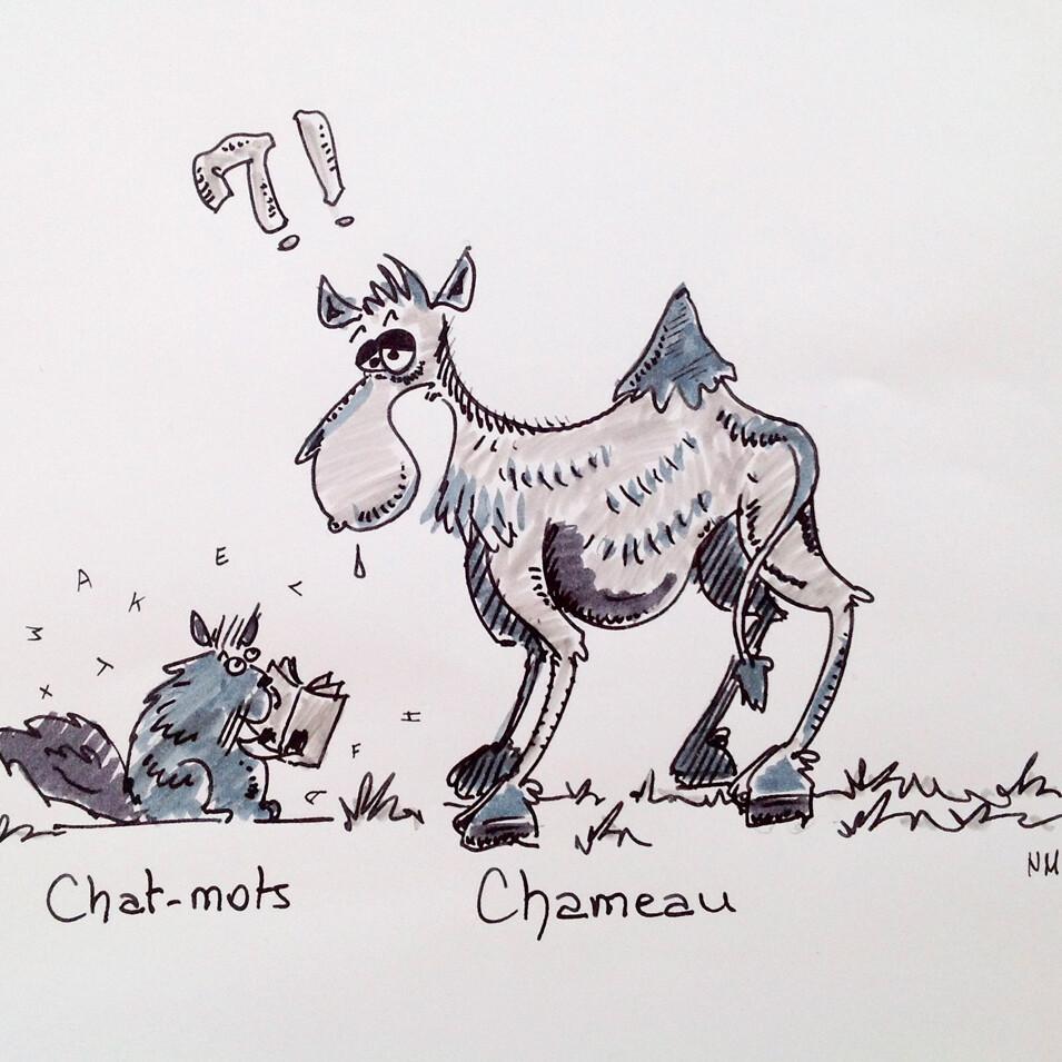 Dessin à la maison inspiré du livres Des chameaux et des poux