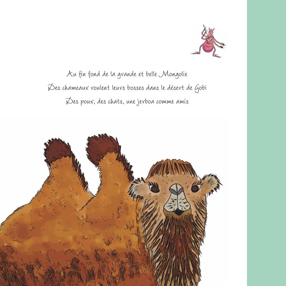Photo du 4ème de couverture contenant le résumé du livre Des chameaux et des poux
