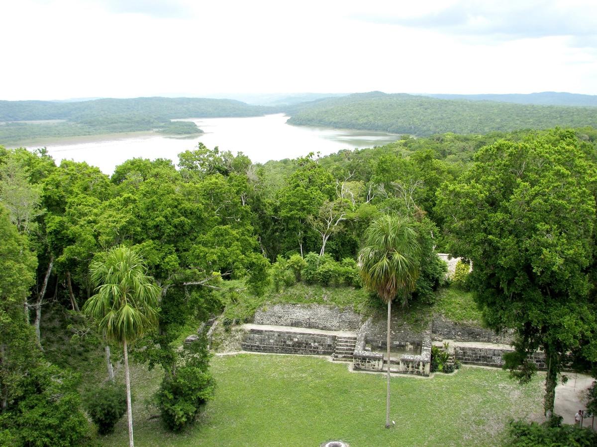 Photo d'une forêt lors d'un voyage au Guatemala pour le livre Chasseurs de pierres au Guatemala
