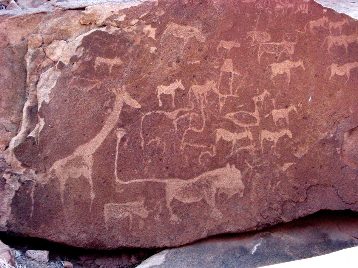Photo de gravures rupestres lors d'un voyage au Namibie pour le livre Chasseurs de pierres en Namibie