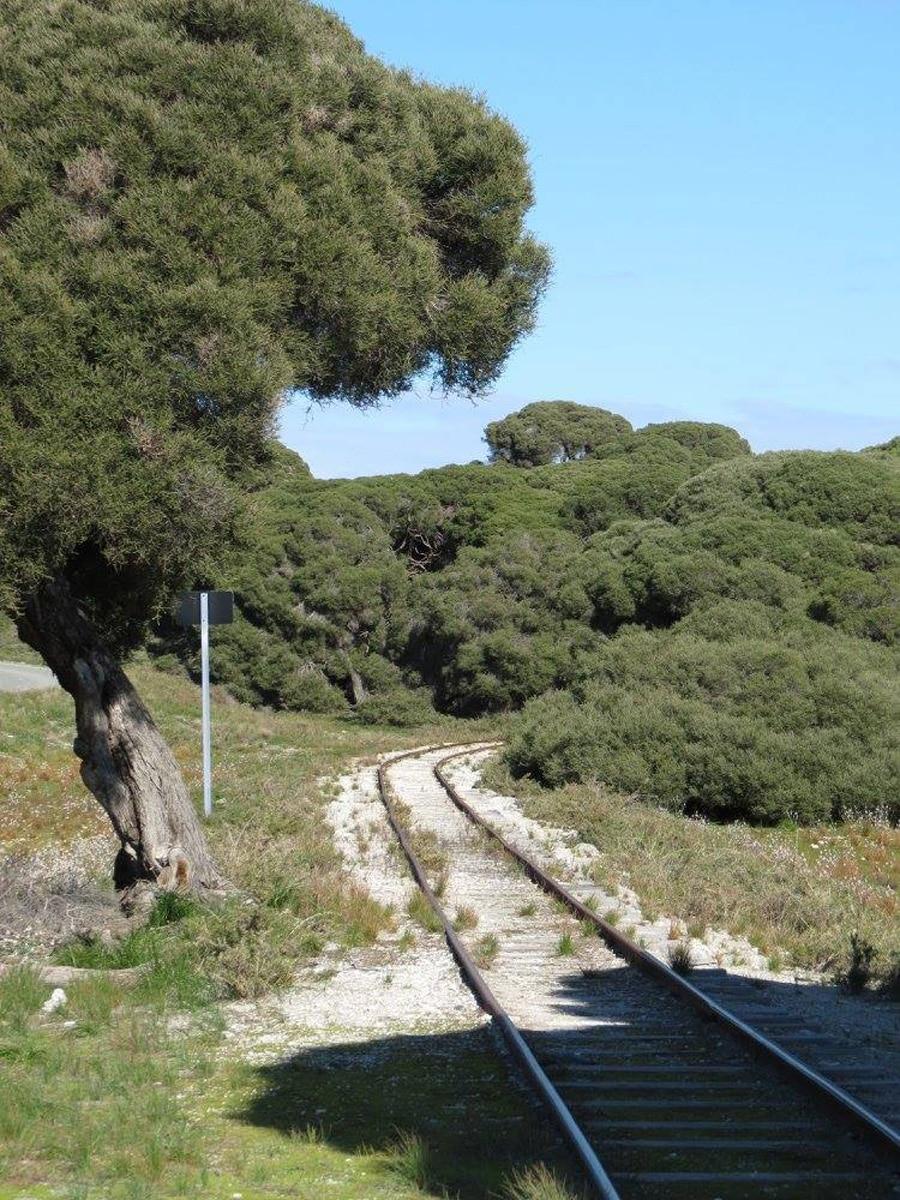 Photo d'un paysage avec les rails d'un train lors d'un voyage en Australie pour le livre Chasseurs de pierres en Australie